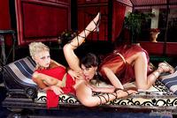 Wild lesbians having sex